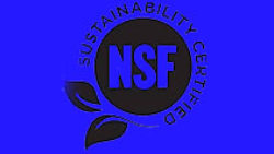 NSF International Forestry Program Public Summary Audit Report